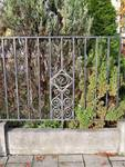 Rue Léopold Ier 353, Jette, grille jardinet (© C. Dubois, photo 2020)